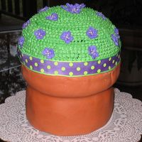 Flower Pot Cake  This was my moms birthday cake. It is chocolate cake with chocolate whipped cream filling with raspberry buttercream icing. Its my first...