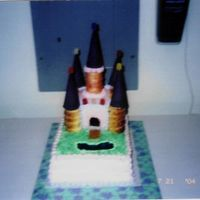 Castle Cake  This is a cake I made for a wedding shower. The couple went to Disney World on their honeymoon. I tried to mimic the Cinderella Castle. One...