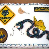 Second Cake For Blue And Gold Went with another sheet cake for cubscout banquet