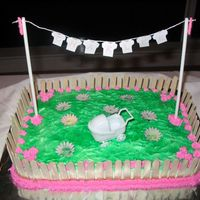 Clothesline Cake For Charlee I used a 9x13 cake and iced it all in green for the grass, then cut off popsicle sticks to make the fence, added the clothesline and the...