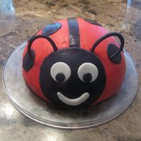 Mini Ladybug Cake For my daughter's 2nd birthday dinner. My kids loved it!