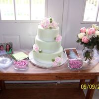 Celadon Luster Dusted Shower Cake With Gumpaste Flowers This is the 2nd cake I made for my shower. If you look closely in the photo there is a printout of a cake on the table. When transporting...