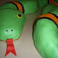Snakes Alive! Christian's Five!