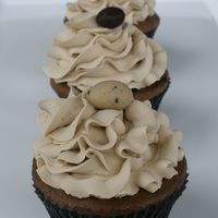 Cupcakes!! chocolate bailey's w/ coffee flavored IMBC and a chocolate covered expresso bean on top!! TFL......