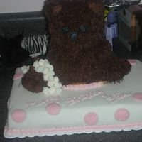 Build-A-Bear Birthday Cake The pictue isn't great but the cake was for a little girl's birthday at Build-a-Bear. The base cake is covered with fondant and...