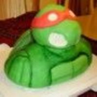 Teenage Mutant Ninja Turtle  Fondant covered, cake bust, rice crispy treat head. Bust was made with 10X10 square pan, sliced in half and stacked. The shell is an 8&quot...