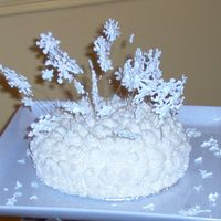 Snowstorm this is a chocolate cake with BC frosting and royal icing snowflakes on wires and lots of glitter