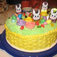 Easter Cake This was really fun to make! Chocolate cake with raspberry filling...my first try at a basketweave and making grass. My cousin of course...