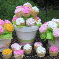 Triple Bouquet! Three Cupcake Bouquets with buttercream flowers.