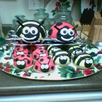 Lady Bugs And Bummble Bees's 1 large lady bug and 1 large bummble bee with mini individual ones