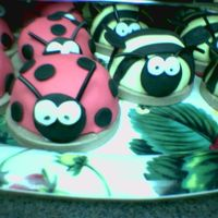 Lady Bugs And Bummble Bees's 3   1 large lady bug and 1 large bummble bee with mini individual ones