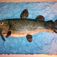 Fresh Catch This is a flathead catfish. I will also send a closer picture of the head. The icing on this cake is buttercream with fondant accents -...