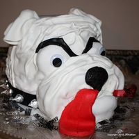 Bull Dog Birthday Cake GA Bull dog character cake; carrot cake frosted with cream cheese and covered in marshmallow fondant