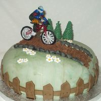 Mountain Bike  This is a cake for my husband who loves his mountain bike. It is a 8 inch madeira covered in orange bc with mmf on top. I normally use shop...