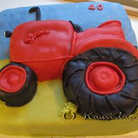 Tractor Cake This cake is also covered with a marzipan. It was suposed to be like a Valmet tractor.