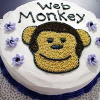 "Web Monkey Cake This is my 2nd cake from my Wilton Cake Course I. For this, I made a ""web monkey"" and brought it into work for all the web..."