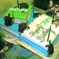 Nature Museum Birthday Cake A client I did a birthday party for had a love of books and wanted to incorporate turtles. This is what I came up with. (The turtles are...