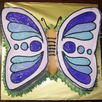First Time Butterfly  10 inch round buttercake, cut up to form butterfly shape. wings decorated with non-dairy whipped topping & piping jelly. the butterfly...