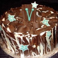 V Cake This was my first time messing with chocolate like this. It was a lot of fun and, thanks to CC, way easier than I thought it would be......