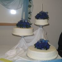 Blue Butterflies  This was only my 7th cake after taking Wilton Course 1. My Sister-in-law gave me one weeks notice and specifically asked for that color...