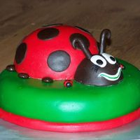 Lady Bug This was my 3rd cake and it was for my daughters 2nd birthday.