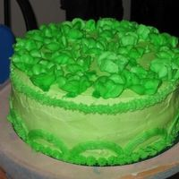 St. Patrick's Day Cake   Two colors green frosting. Even the cake was green!