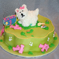 Webkinz Cake Childs webkinz made from royal icing.