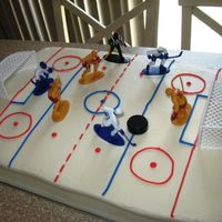 Hockey Rink   For an end of season hockey party for the kids