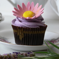 Gerbera Cupcake Chocolate cupcake with buttercream and gumpaste gerbera. And just a touch of edible glitter :) TFL.