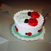 Lady Bugs This cake was for a friend of my brothers. Ever since he took her that cake, I have had so many orders from his friends. Word of mouth is...