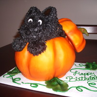 Scottie In A Pumpkin Scottie dog is cream cheese, pumpkin fondant.The cake inside was pumpkin chocolate chip