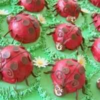 Ladybugs   I made these mini ladybug cakes for a bridal shower. I used the Wilton mini ball pan.