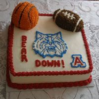 Uofa Wildcats   This cake is a 14in square vanilla with cherry filling. Decorated with buttercream icing.