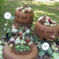 Sugared Fruit Grooms Cake This grooms cake was for a reception held in the grooms home area a few weeks after the wedding. The reception was at a winery which made...