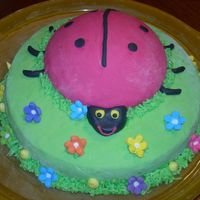 Nataliâ´s Ladybug Cake Simple vanilla and fondant for Natali´s school party