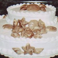 Chocolate Sea Shells I made this cake for a friend's bridal shower. They were getting married on the beach, so I found it appropriate.