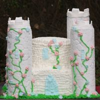 Dreamy Castle I made this cake fro my son and daughter's birthday party. The towers are fondant covered potato chip cans with buttercream and royal...