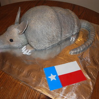 Armadillo Cake  This cake was a groom's cake for a wedding, they wanted a cake shaped like an armadiilo because of the bloody armadillo cake on Steel...