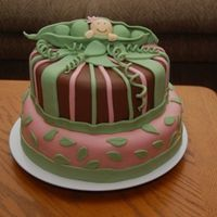 Baby Girl In A Pea Pod Baby Shower Cake for my sister-in-law who is expecting a little girl. Top layer is german chocolatewith coconut pecan filling, covered in...