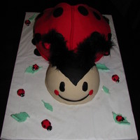 1St Birthday Ladybug Cake The cake was made for a 1st birthday party. I also made a littl smash cake to go with it. This cake is my version of a ladybug. Thanks to...