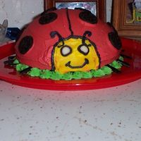 Ladybugs_028.jpg This is the cake I made for my daughters 1st birthday. This was her cake to destroy. Her nickname is Ladybug!