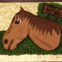 Horse Cake My first sculpted horse head cake. All fondant, bc grass, fondant sign.