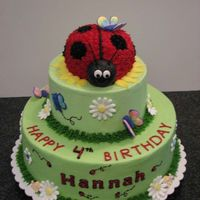 "Ladybug Cake 10"" butter/white cake, 6"" and ladybug chocolate. Buttercream icing with royal decorations."