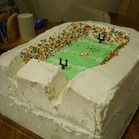 "Ohio State Football Stadium (Aka ""the Horseshoe"") Completely edible. Sculpted cake, iced with Bettercream, chocolate goal posts."