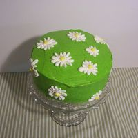 Green Daisy Cake First try at a full buttercream cake. Got a few raised eyebrows from other people in my course while icing the green coat. Could have used...