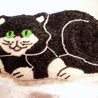 Cat Cake This is the first cat cake I made for Cindy Yeager