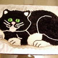 Cat Cake2 This is my second Cat cake. I made this one for Blair Gardner
