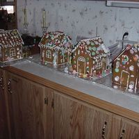 Finished Gingerbread Houses  This were the masterpiesces that the kids created at daycare. I was so impressed with how well each of them did. We have future bakers here...