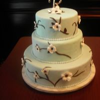 Bridal Show 2007 Cake This is my first dummy cake. It's covered in tiffany blue tinted fondant, hand cut flowers and chocolate fondant branches. This is...