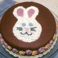 Easter Bunny Cake Covered with plastic chocolate and then decorated with buttercream. Thanks for looking!
